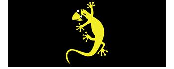 Gecko Grips